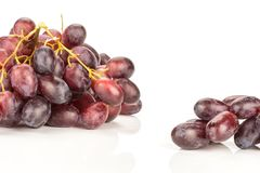 Fresh raw red wine grapes isolated on white. Red globe grape two clusters isolated on white background shiny deep pink berries Stock Photos