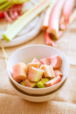 Fresh raw rhubarb Royalty Free Stock Photography