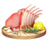 Fresh raw ribs with lemon and herbs on a plate. Watercolor Stock Photos