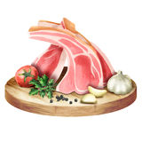 Fresh raw ribs with spices and herbs on a plate. Watercolor Stock Image