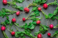 Fresh Raw Ripe Red Radishes with Green Leaves Scattered on Black Concrete Stone Background. Top View Flat Lay. Vibrant Colors. Creative Image Template for Stock Photography
