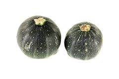 Fresh raw rotund zucchini. On a light background Stock Photos