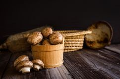 Fresh raw royal champignons on dark wooden rustic table. Close up view. Vegan food Royalty Free Stock Image