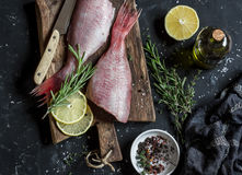 Fresh raw ruby snapper, herbs and spices on a dark background. Cooking dinner Royalty Free Stock Images