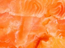 Fresh salmon background, juicy and fresh fish fillets. Fresh raw salmon background, juicy and fresh fish fillets Stock Image