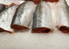 Fresh raw salmon carcasses on ice. At the market Royalty Free Stock Image
