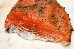 Fresh raw salmon chunks with herbs. A Fresh raw salmon chunks with herbs Stock Images