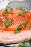 Fresh raw salmon and dill Royalty Free Stock Photography