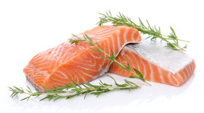 Fresh raw salmon fillet with herbs. Isolated on white Royalty Free Stock Photos