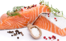 Fresh raw salmon fillet with herbs and spice Royalty Free Stock Photos