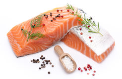 Fresh raw salmon fillet with herbs and spice Royalty Free Stock Images