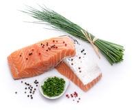 Fresh raw salmon fillet with herbs and spice. Isolated on white Stock Photos