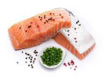 Fresh raw salmon fillet with herbs and spice Stock Images