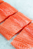 Fresh raw salmon fillet. On ice Stock Images