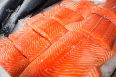 Fresh raw salmon fillet. On ice at fish market Royalty Free Stock Photography
