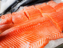 Fresh raw salmon fillet. On ice at fish market Royalty Free Stock Image
