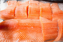 Fresh raw salmon fillet. On ice at fish market Stock Photography