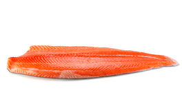 Fresh raw salmon fillet. Fresh salmon fillet isolated on white backgrund Stock Image