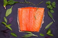 Fresh raw salmon fillet with lemon, lime, sage, mint, spinach, cilantro, thyme and rosemary. Healthy food concept on black backgro Stock Images
