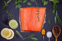 Fresh raw salmon fillet with lemon, lime, sage, mint, spinach, cilantro, thyme and rosemary. Healthy food concept on black backgro Stock Image