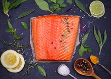Fresh raw salmon fillet with lemon, lime, sage, mint, spinach, cilantro, thyme and rosemary. Healthy food concept on black backgro. Und. View from above, top Royalty Free Stock Photos