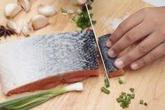 Fresh raw salmon fillet on wood background. Fresh raw salmon fillet on wood background Royalty Free Stock Photos