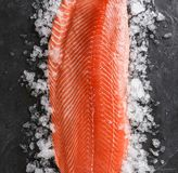 Fresh raw salmon fish steak with spices on ice over dark stone background. Creative layout made of fish, top view, flat lay.  royalty free stock photography