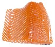 Fresh Raw Salmon Fish. On a white background Stock Photos