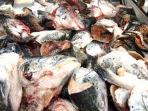 Fresh raw salmon heads Stock Photo