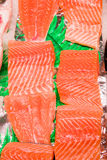Fresh raw salmon. On ice. Big pieces raw salmon. Fish on ice. Fresh fish Royalty Free Stock Photos