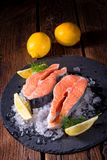 Fresh raw salmon on ice. A fresh raw salmon on ice Royalty Free Stock Images