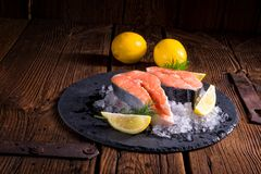 Fresh raw salmon on ice. A fresh raw salmon on ice Stock Photography