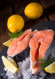 Fresh raw salmon on ice. A fresh raw salmon on ice Stock Images