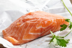 Fresh raw salmon meat. On white paper Royalty Free Stock Images