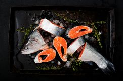 Fresh raw salmon pieces red fish with ice on a dark background. Flat lay. Top view Royalty Free Stock Photography