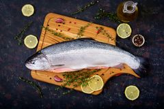 Fresh raw salmon red fish on a dark background. Flat lay. Top view Stock Photography
