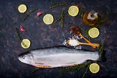 Fresh raw salmon red fish on a dark background. Stock Photos