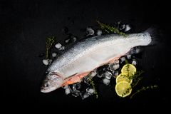 Fresh raw salmon red fish with ice on a dark background. Flat lay. Top view Royalty Free Stock Photo