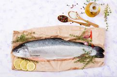 Fresh raw salmon red fish on a light background. Fresh raw salmon red fish  on a light  background. Flat lay. Top view Stock Images