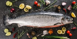 Fresh raw salmon red fish with spices, lemon, pepper, rosemary on dark stone background. Creative layout made of fish, top view,. Flat lay stock photo