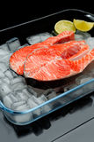 Fresh Raw Salmon Red Fish Steak. Isolated on ice Royalty Free Stock Image