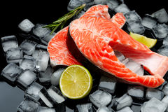 Fresh Raw Salmon Red Fish Steak. Isolated on ice Stock Image