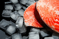 Fresh Raw Salmon Red Fish Steak. Isolated on ice Stock Photos
