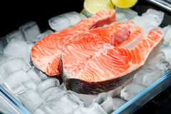 Fresh Raw Salmon Red Fish Steak. Isolated on ice Royalty Free Stock Photos