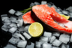 Fresh Raw Salmon Red Fish Steak. Isolated on ice Royalty Free Stock Photography