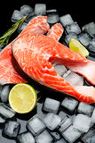 Fresh Raw Salmon Red Fish Steak. Isolated on ice Stock Photography