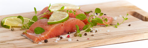 Fresh Raw salmon with spices. Fresh salmon fillet with oregano and lime slices. Selective focus Stock Images