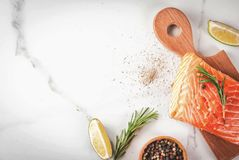 Fresh raw salmon steak fillet. Fresh raw fish salmon, steak fillet, with spices, lime, rosemary, salt, on white marble background, copy space top view Royalty Free Stock Images