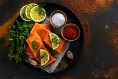 Fresh raw salmon steak. On dark background. Cooking or grill concept. Space for text Royalty Free Stock Photos