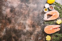 Fresh raw salmon steak. Lemon, rosemary and spices on dark rustic concrete background. Food frame top view with copy space. Ingredients set for making healthy Stock Images